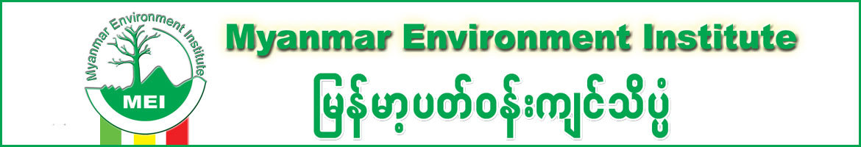 MEI (Myanmar Environment Institute)