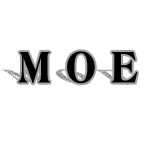 Moe Education for Special Needs Children
