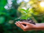 Environmental Science Online Courseလျှောက်လွှာခေါ်ယူခြင်း